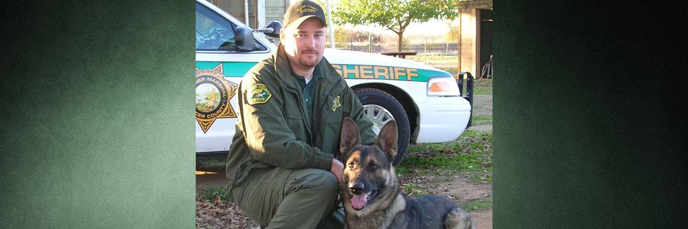 Passing of K9 Jax