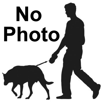 No Photo Available